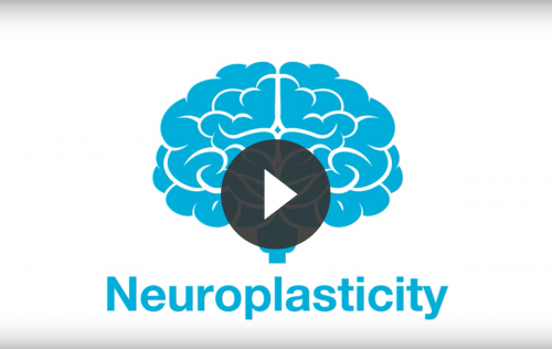 Neurofeedback and neuroplasticity video link
